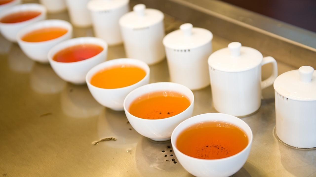 手搖茶葉飲料茶葉感官品評品質管理/ 茶不多先生商用飲料茶葉批發