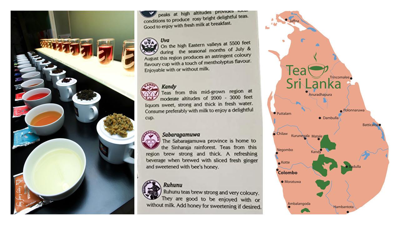 手搖茶葉基底茶|飲料茶葉供應|早午餐營業用紅茶|商用紅茶批發| 茶不多先生了解世界各地產茶地區的風味,可以了解消費者的喜好性。