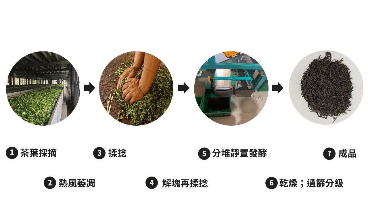 斯里蘭卡錫蘭紅茶OP1手搖茶葉製作流程/ 茶不多先生飲料茶葉批發
